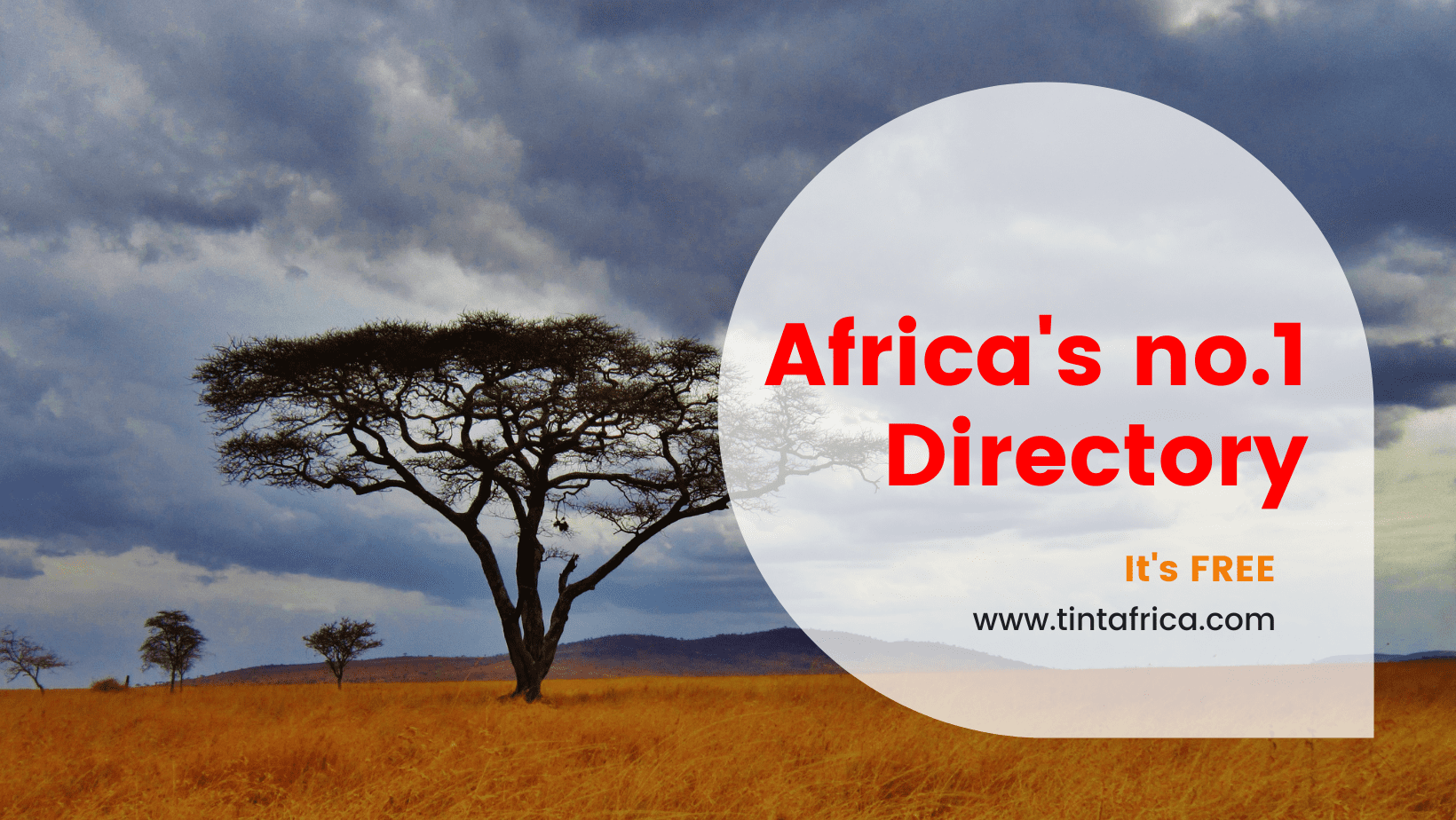 Tint Africa is the new free directory for African businesses